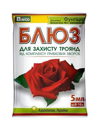 Блюз фунгицид для роз, 5 г, фото 2