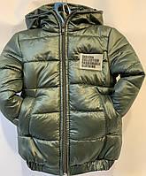 Куртка дитяча вітровка оптом 92-116