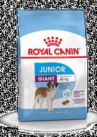 Роял Канин Royal Canin GIANT JUNIOR 15 кг.
