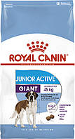 Royal Canin GIANT JUNIOR ACTIVE 15кг