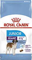 Royal Canin GIANT JUNIOR 15кг