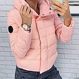 Жіноча демісезонна куртка з великим коміром, чорний, жовтий, блакитний, рожевий, малина, фото 2