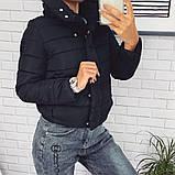 Жіноча демісезонна куртка з великим коміром, чорний, жовтий, блакитний, рожевий, малина, фото 3