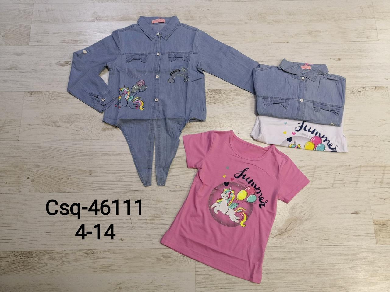 Комплект-двойка для девочки, размеры 4-14 лет оптом, Seagull, арт. CSQ-46111