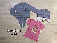 Комплект-двойка для девочки, размеры 4-14 лет оптом, Seagull, арт. CSQ-46111, фото 1