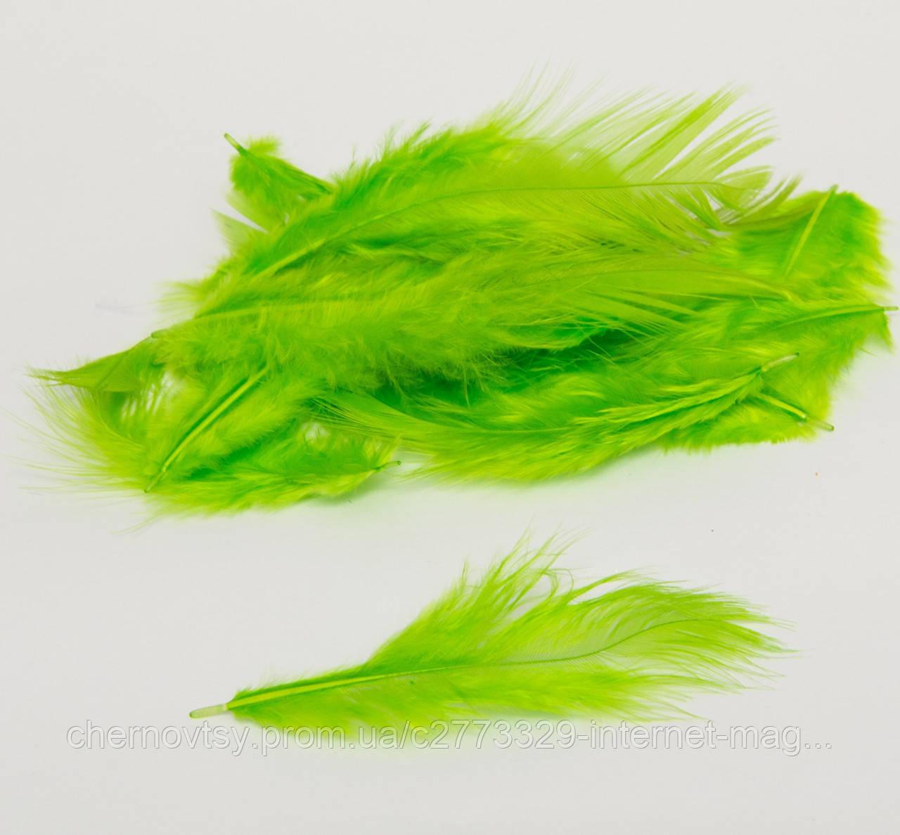 Перья цветные 100 шт. зеленые
