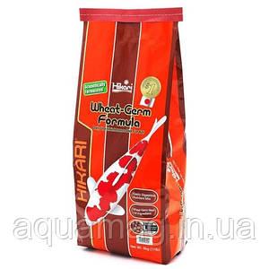 Корм для карпов кои Hikari Wheat-Germ 5 kg (для низких температур, корм для прудовых рыб )