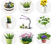 Фитосветильники Світлодіодні для росту рослин