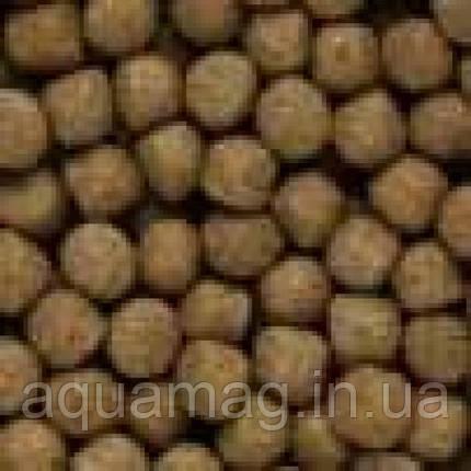 Корм для карпов кои Saki-Hikari Growth Diet Floating 15 kg (для быстрого роста с пробиотиками для прудовых рыб, фото 2