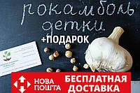 Рокамболь испанский семена (детки) (20 штук) (слоновий чеснок) гигантский лук-чеснок, насіння часнику