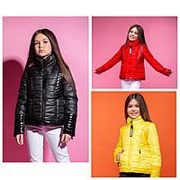 Куртка для девочки демисезонная с лаковыми вставками