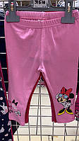 Лосины  для девочек оптом, Disney, 68-86 см,  арт. 91510
