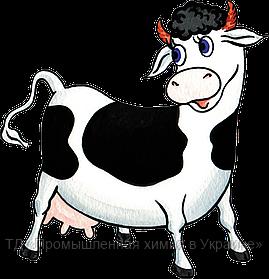 Какувеличить процент содержания жира в молоке? У нас есть решение!!!