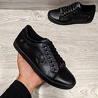 Philipp Plein кожаные мужские кеды (туфли) из натуральной кожи (шкіряні кеди філіп плейн) мужская обувь