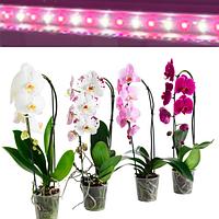 Фитолампа 18Вт 120см для орхидей, комнатных цветов, микрозелени