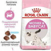 Корм сухой для котят от 1до4 месяцев и для кошек при беременности и лактации Royal Canin mother&babycat 10кг