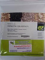 Семена редиса Селеста F1 (Enza Zaden) 250 г ― ранний гибрид, всесезонный, круглый, ярко-красный.