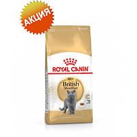 Корм сухой для кошек (британская короткошерстная) старше 12 месяцев Royal Canin british shorthair Adult 10 кг.