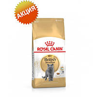Royal Canin british shorthair Adult корм сухой для кошек (британская короткошерстная) старше 12 месяцев  10 кг.