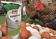 Концентат, БМВД для курей несучок у період яйцекладки 30% (25кг) KOUDIJS Каудайс (™ D-МІКС) Україна-Голландія