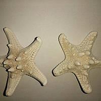 Заколка для волос морская звезда