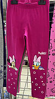 Лосины для девочек оптом, Disney, 3-8 лет, арт. 02049