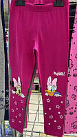 Лосины для девочек оптом, Disney, 3-8 лет,  № 02049