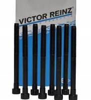 Болты ГБЦ Renault Kangoo VICTOR REINZ (14-32089-01)