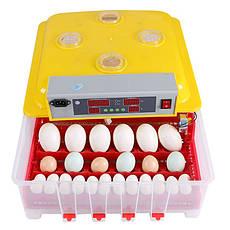 Инкубатор с автоповоротом яиц MS-36/144, фото 2