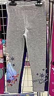 Леггинсы трикотажные для девочек Disney 3-8 лет