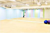 Обустройство зала для гимнастики зеркалами, фото 1