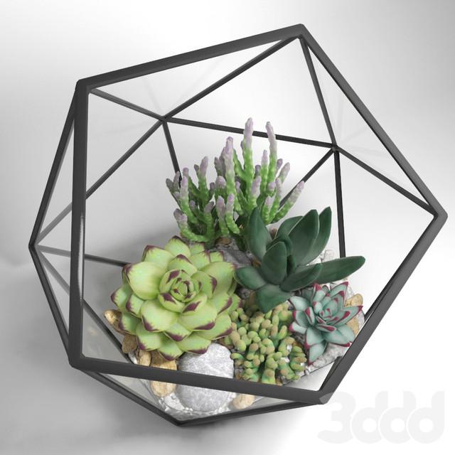 Флорариум для цветов Икосаэдр 120х100