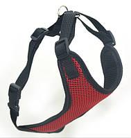 Шлея для животных Спорт №4 нагрудник сетка красный, фото 1