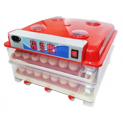 Інвекторний автоматичний Інкубатор MS-110, фото 2