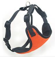Шлея для животных Спорт №2 нагрудник сетка оранжевый, фото 1