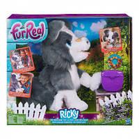 Интерактивный щенок FurReal Friends Рикки