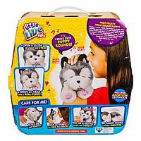 Интерактивная игрушка Little live pets My Dream Puppy Хаски Фрости 28278 ТМ: Little live pets