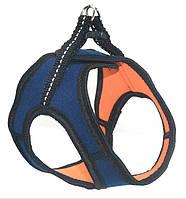 Шлея для животных Фитнес №1 неопреновая синяя, фото 1