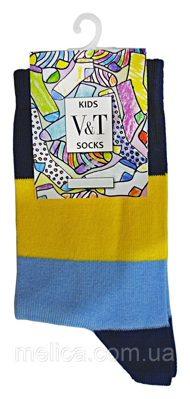 Носки детские Kids Socks V&T classic ШДКг 024-0440 Гарри р.22-24 Темно-синий/голубой