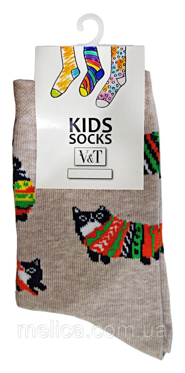 Носки детские Kids Socks V&T classic ШДКг 024-0445 Коты р.20-22 Светло-бежевый меланж