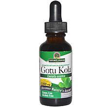"Центелла азиатская Nature's Answer ""Gotu Kola"" без спирта, 2000 мг (30 мл)"