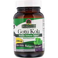 """Центелла азиатская Nature's Answer """"Gotu Kola"""" для поддержки иммунитета, 330 мг (60 капсул)"""