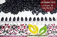 Семена подсолнечника Финистер под Евро-Лайтинг