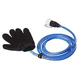 Перчатка-душ для мойки животных 2Life QL-018 Голубой (n-475), фото 3