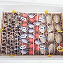 Инкубатор механический Теплуша ИБ 100 Тэновый с влагомером +12В, фото 9