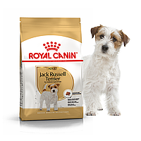 Сухой корм Royal Canin Jack Russel Adult 7,5кг