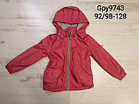 Куртка весенняя на флисе для девочек 92/98-128 см