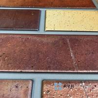 Пластикова Декоративна Панель ПВХ Регул Теракота 983*497 мм, фото 2