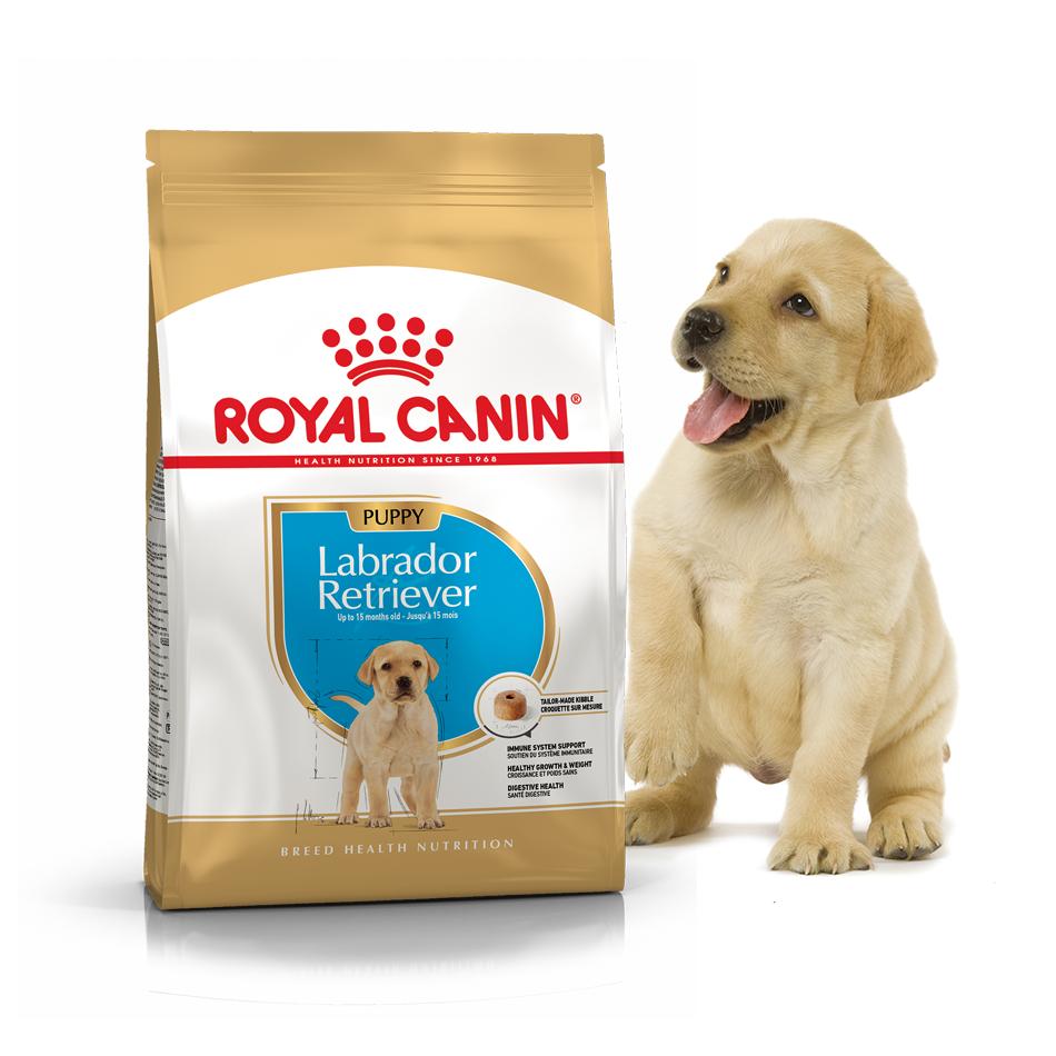 Сухой корм Royal Canin Labrador Retriever Puppy (Junior) 12кг