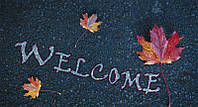 Alexwood Welcome. WL - 031